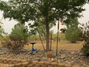 The new bird feeder and the smoky skies
