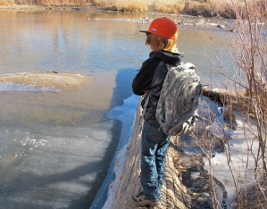 Contemplating the ice.
