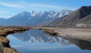 Job's Peak reflected in the Carson River