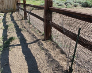 The plastic fencing on the west side of the fence