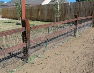 The chicken wire on the east side of the fence