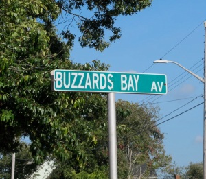 The best we could do in Buzzards Bay town