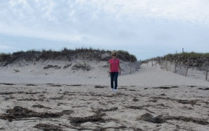 These dunes have a very fine sand, unlike sand on the west coast.