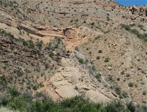 The Great Uncomformity?  At the very least, it's a visible fault in the earth