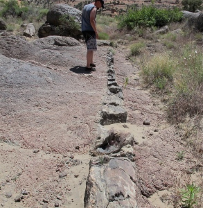 Chris is standing on the schist and looking at quartz dikes that came up in cracks of the schist before it totally cooled.   It really does look like someone placed a dike in the rock. Another dike is by Chris' right foot and goes perpendicular to the large dike.