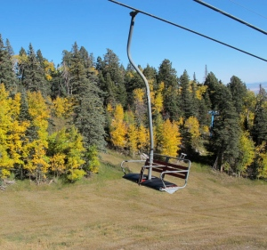 But first, we walked around a bit and discovered a ski lift going down the other side of the mountain. Again, we took a jillion pictures of the aspens and other trees.