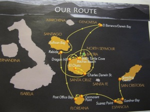 Before I get started on the adventure, I want to show you our route in the islands. We landed in Baltra and left from San Cristobal landing on 8 islands altogether. Baltra is a small island separated from Santa Cruz by only a narrow strait.
