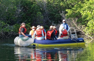 The Zodiac was our mode of transportation for any excursion from the Galaven. The trees in the background are mangroves