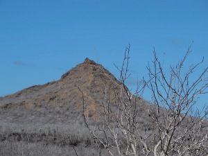 Dragon Hill or Cerro Dragon.