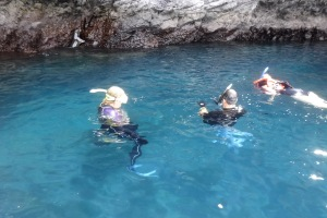 Snorkelers in the cove