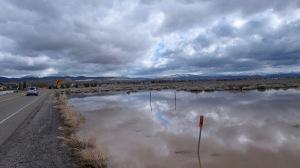flood by Stephanie